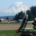Puyallup Farmland