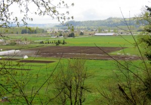 Tilled Acres In the Orting Valley