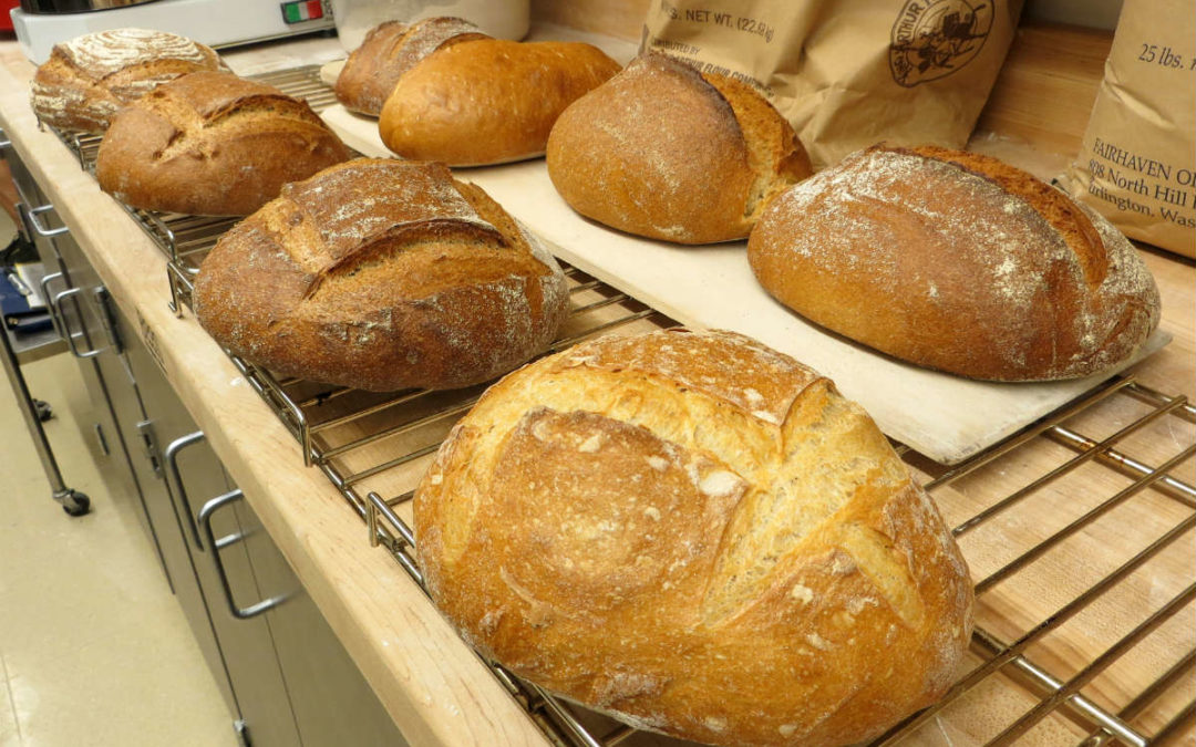 Bread:  The Ubiquitous Food