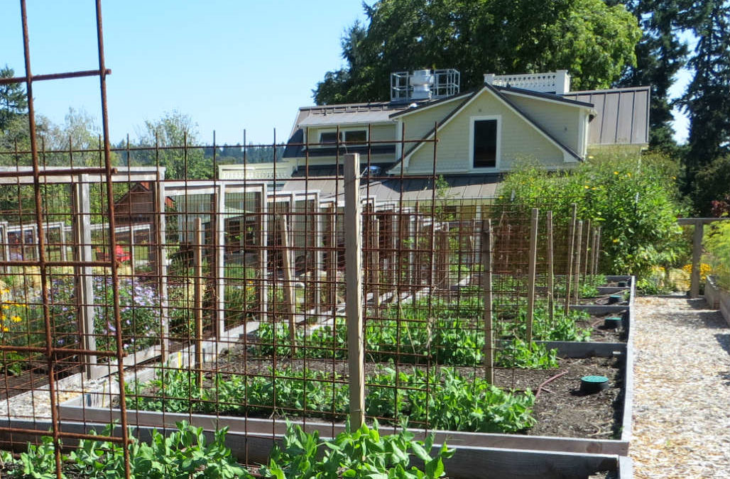 Where Sustainability Reigns and Community Flourishes