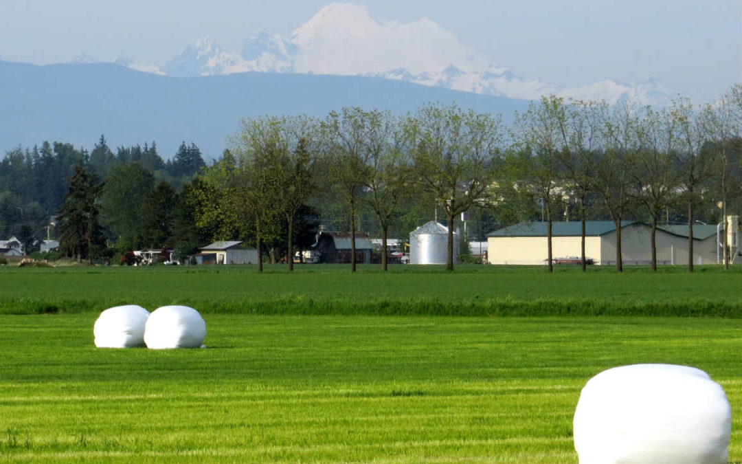 Skagit County:  Creating New Food Production Models
