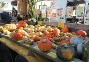 Let Us Farm Winter Squashes
