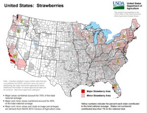 U.S. Strawberry Production Map