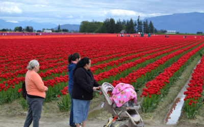 The Land That Feeds Us: Skagit Valley