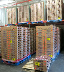 Pallets of Well-Pict Berries at General Produce